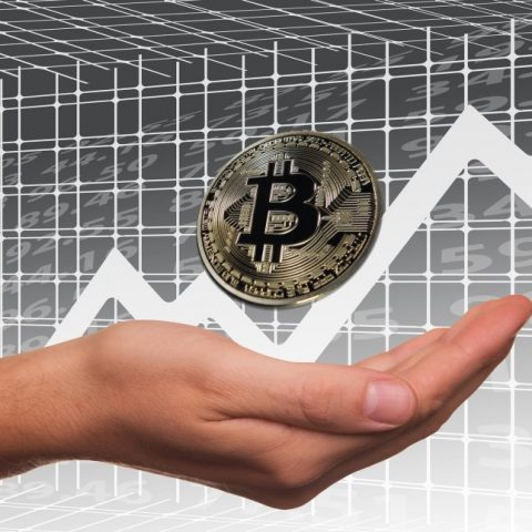 Making Money with Cryptocurrency: the Journey of a Beginner