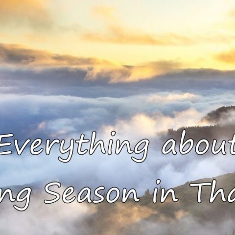 Everything about the Burning Season in Chiang Mai & Thailand