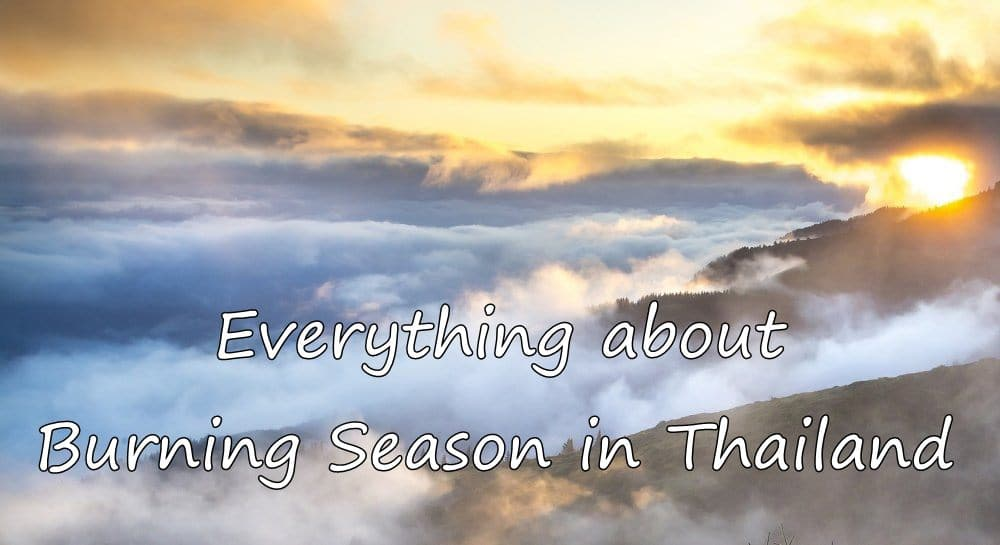 Photo of Everything about the Burning Season in Chiang Mai & Thailand