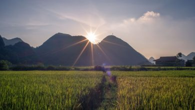Photo of Top Things to Do in Laos